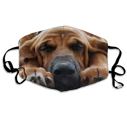 Bloodhound Dog Design Dustproof Earloop Mouth Mask for Women Men, Anti Flu Pollen Painting Outdoor Half Face Mouth Mask - Anti-Allergens Mouth-Muffle