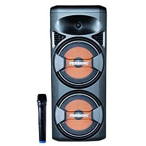 3PERSANG Onyx Sound Tower Wireless Bluetooth Speaker with Remote Control 1 Wireless Mic Fm Radio, USB Sd Card Slot (Black)