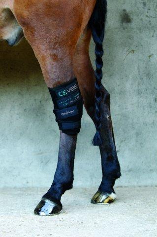 Horseware Ice-Vibe Hock Wrap (Hock Ice Boot)