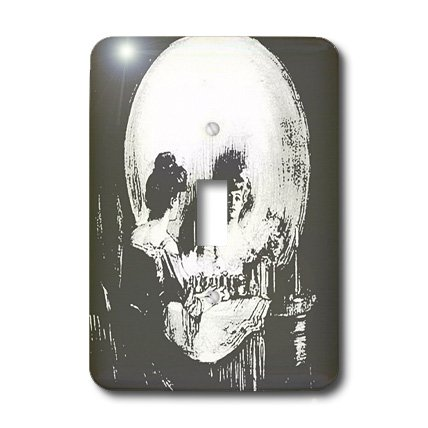 3dRose LLC lsp_46711_1 All Is Vanity Ghost, Halloween, Optical Illusion, Paranormal, Seasonal, Silhouette, Skeleton Single Toggle Switch by 3dRose