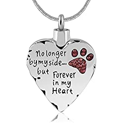 Unisex No Longer by My Side But Forever in My Heart Dad&Mom Cremation Ashes Urn Pendant Necklace (Pet)