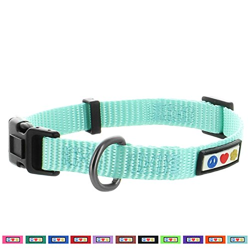 Pawtitas Dog Collar for Extra Small Dogs Training Puppy Collar with Solid - XS - Teal
