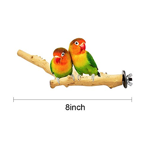 Borange Bird Perch Parrot Perches Natural Wood Branches for Parakeets for Small Large Birds Cockatiel Conure Cage Accessory (20cm/8 inch) by Borange