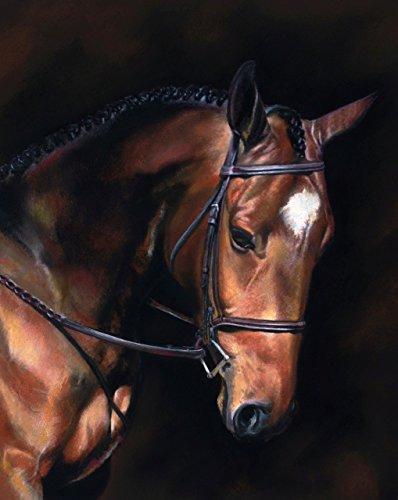 MUDDY WATERS - Fine Art Horse Print 11 x 14 Inch from Original Pastel Equestrian - Horse Art Fine
