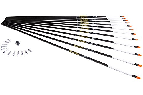 carbon express arrows mutiny - 2