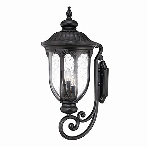 Acclaim 2221BK Laurens Collection 3-Light Wall Mount Outdoor Light Fixture, Matte Black