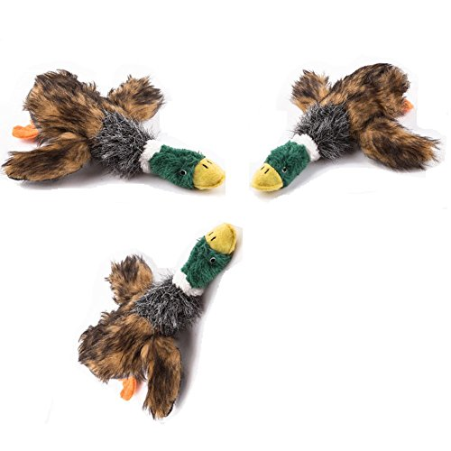 Karmax 9″ Pet Mallard Duck Squeak Toys (3pcs) for Small & Medium Breeds Dogs For Sale