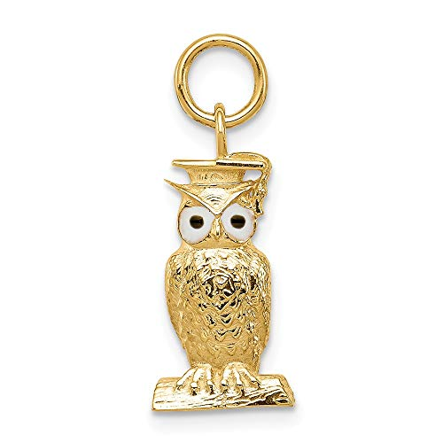 14k Yellow Gold Graduation Owl Pendant Charm Necklace Enamel Fine Jewelry Gifts For Women For Her