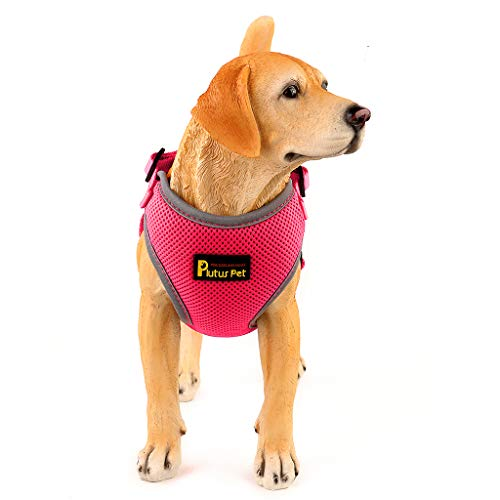 No Pull Step-in Mesh Dog Harness,Reflective Easy Walk Puppy Harness,Neck and Chest ()