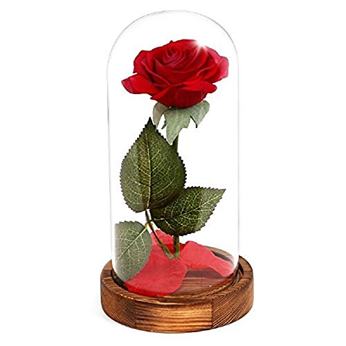 Beauty and the Beast Red Rose / Pink Rose in Glass Dome on Wooden Base by ASOMMET, Battery Powered LED Lights, Valentines Gift, Home Decor, Gift for Valentine's Day Wedding Anniversary Birthday Party