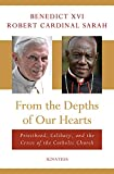 From the Depths of Our Hearts: Priesthood, Celibacy and the Crisis of the Catholic Church: more info
