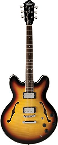 - Oscar Schmidt 6 String OE30 Classic Semi-Hollowbody Cutaway Electric Guitar. Tobacco Sunburst, Right, Burst (OE30TS-A)