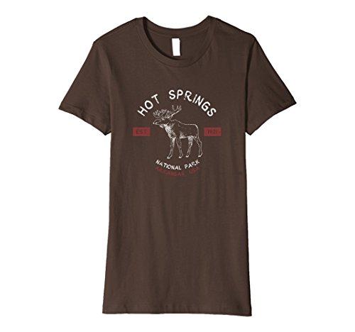 Womens Hot Springs National Park T Shirt Vintage Arkansas Souvenir Medium Brown