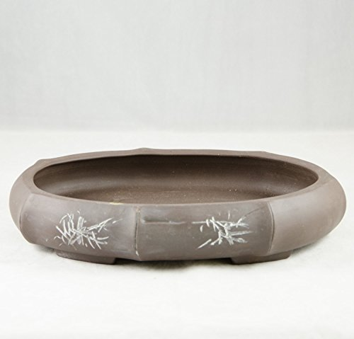 isha Bonsai Pot 11