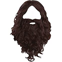 Biblical Wig & Beard Set Costume Accessory