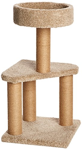 AmazonBasics Medium Cat Condo Activity Tree Tower with Scratching Post Toy - 16 x 16 x 31 - Post Kitty