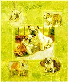 Bulldog Gift Bag -- Set of 4 Gift bags