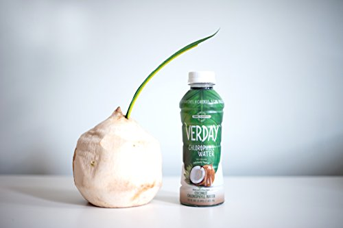 Verday Chlorophyll Water, Coconut, 16 Ounce, 12 Pack