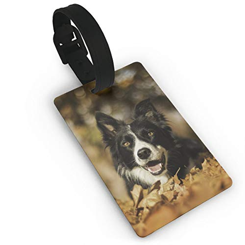 SVVOOD Border Collie Dog Luggage Tag PVC Travel ID Suitcases Label for Bag with Strap