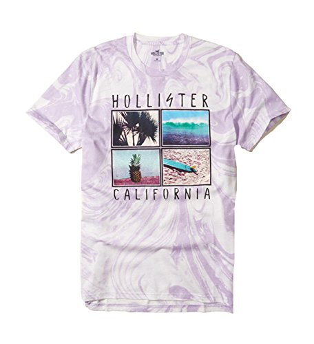 Hollister Men's Tee Graphic T-Shirt V Neck (Purple 212, M)