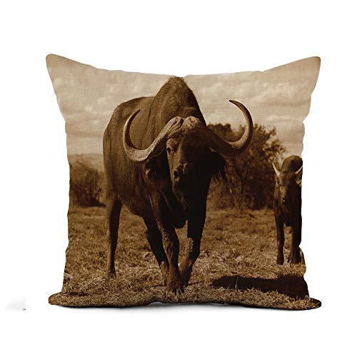 Awowee Flax Throw Pillow Cover African Monochrome Portrait of Cape Buffalo Head and Horn 18x18 Inches Pillowcase Home Decor Square Cotton Linen Pillow Case Cushion Cover