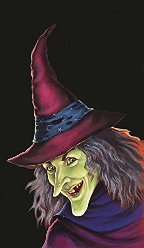 WOWindow Posters Feeny the Witch Halloween Window Decoration 34.5