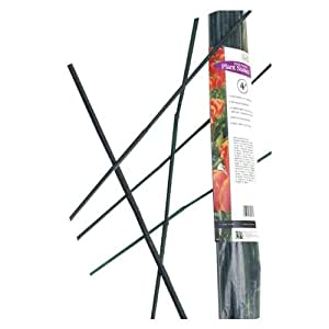 Gardener 39 S Blue Ribbon Bb4 25 Pack Bamboo Plant Stakes 4 Feet Green Stakes For