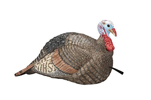Hunters Specialties H.S. Strut Jake Snood Turkey Decoy