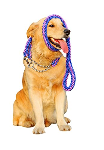 Freerun Heavy Duty Nylon Braided Collar & Pet Leash Pet Chain Rope for Medium Large Training Dogs - PurpleBlue, M