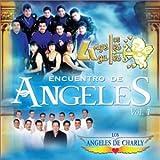 Encuentro De Angeles Vol. 1