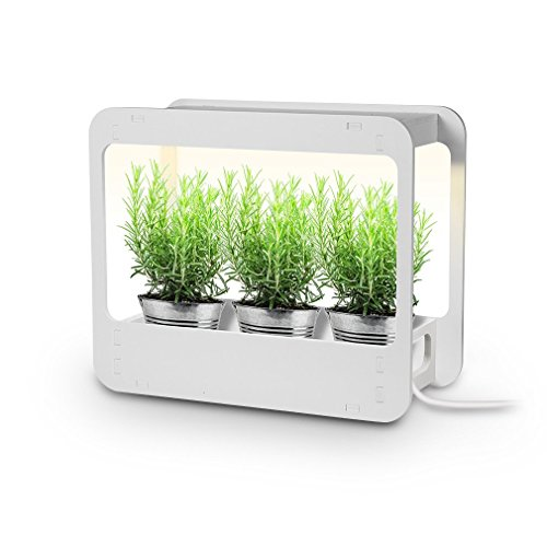 Led Kitchen Garden Light