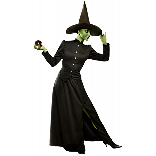 GSG Wicked Witch of the West Costume Adult Womens Halloween Fancy Dress (Wicked Witch Fancy Dress)
