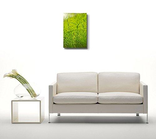 Fresh Green Grass Beside a River Nature Beauty Wall Decor