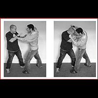 """Thug- Jitsu"" Intelligent Asymmetric Responses to Real World Violence"