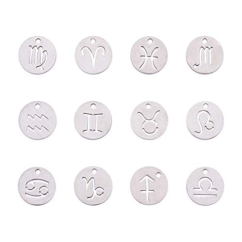 PH PandaHall 24pcs 304 Stainless Steel 12 Constellations Zodiac Sign Pendants Charms Astrology Horoscope Charms Beads for DIY Jewelry Craft Making(Stainless Steel - Zodiac Sign Horoscope Capricorn