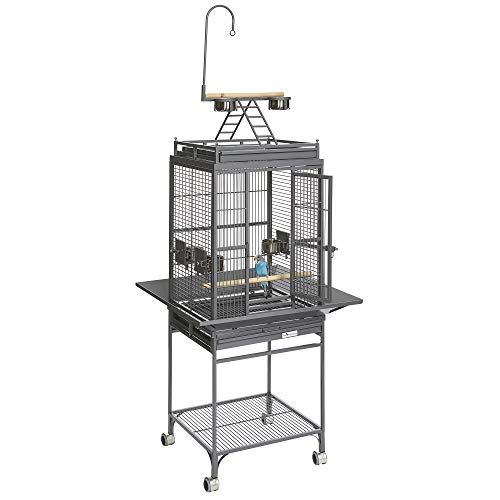 (MidWest Homes for Pets Nina Bird Cage-Platinum Play Top )