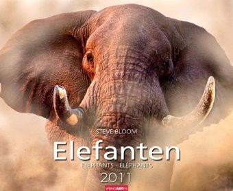 Elefanten 2011