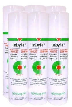 6 Packs Enisyl-F Oral Paste for Cats – 600 mL, My Pet Supplies