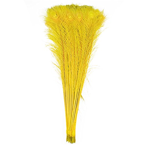 100pcs 100% Natural Peacock Feathers Fade Yellow 80-90CM/32-36inch for DIY Costume mask Headdress