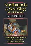 Nudibranch & Sea Slug Identification