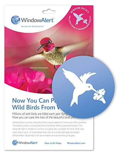 WindowAlert Hummingbird Decals