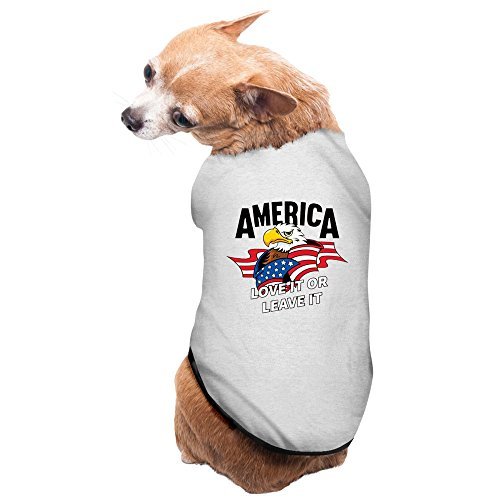 Colosseum Costumes (Gray America USA Flag With Eagle Pet Supplies Dog Costume Warm Sweater)