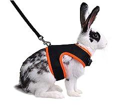 Qchengsan - Arnés suave con correa para conejos y conejos ...
