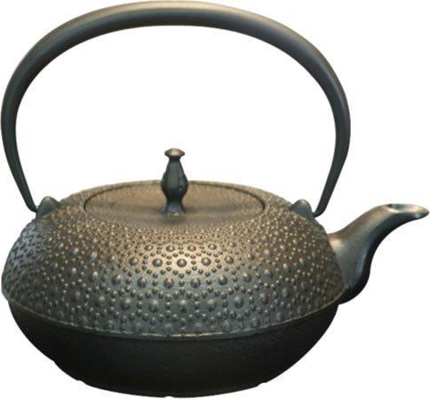 Seieido iron kettle Shinonome turtle 1L H-193