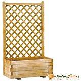 Jardinière lierre rectangulaire en bois avec treillage droit