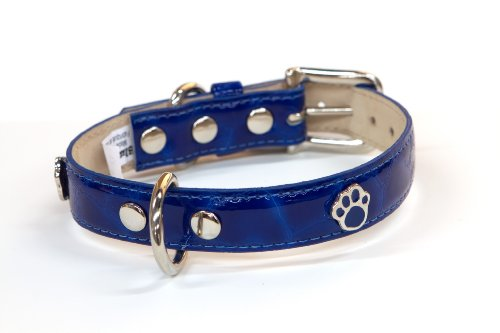 Bluemax Italian Synthetic Turtle Shell Print Dog Collar with Paw Stud, 1-Inch by 22-Inch, Royal