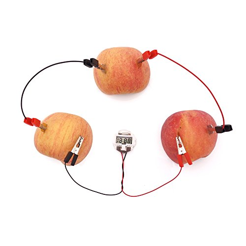 TommoT Fruit Battery-Potato Alarm Clock