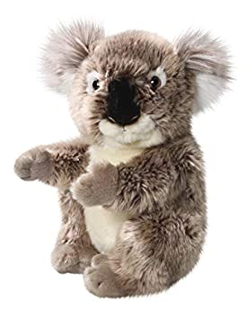 Carl Dick Peluche - Oso de koala (felpa, 22cm) [Juguete] 2883