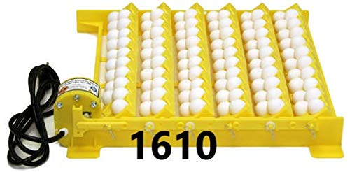 2370 - Electronic Thermostat Hova-Bator Incubator (Optional Egg Turner) (1610 Egg Turner w/ 6 Universal & 6 Quail Racks)