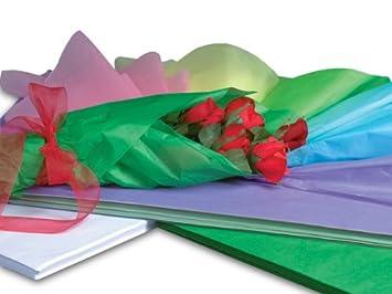 Amazon rainbow waxed florist tissue paperream 400 18 x 24 rainbow waxed florist tissue paperream 400 18quot x 24quot sheets 2 unit mightylinksfo Gallery